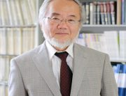 Yoshinori Osumi